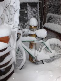 Snowday_2